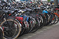 Amsterdam city of bikes